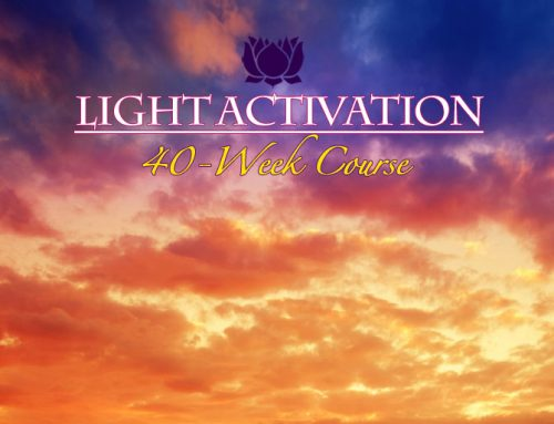 Light Activation Course